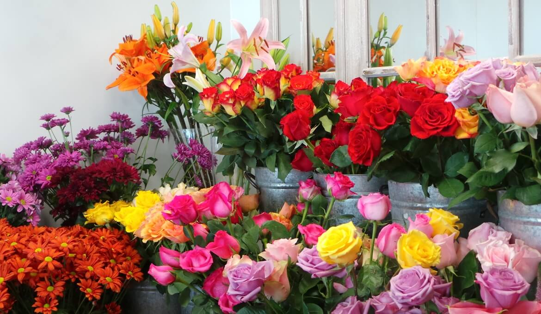 shop hoa tươi bình thạnh