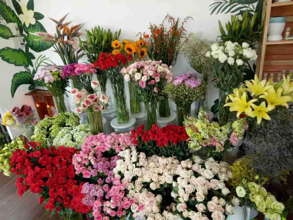 shop hoa tươi dĩ an bình dương
