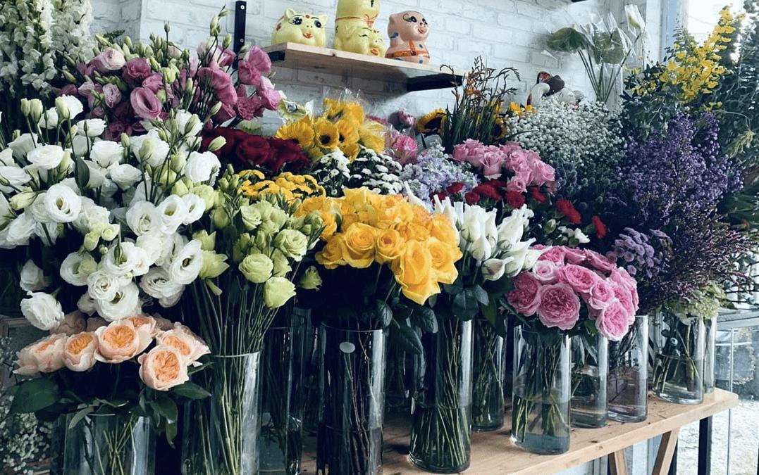 Tổng hợp các loại hoa mà trang Sachiomega 369 hoạt động