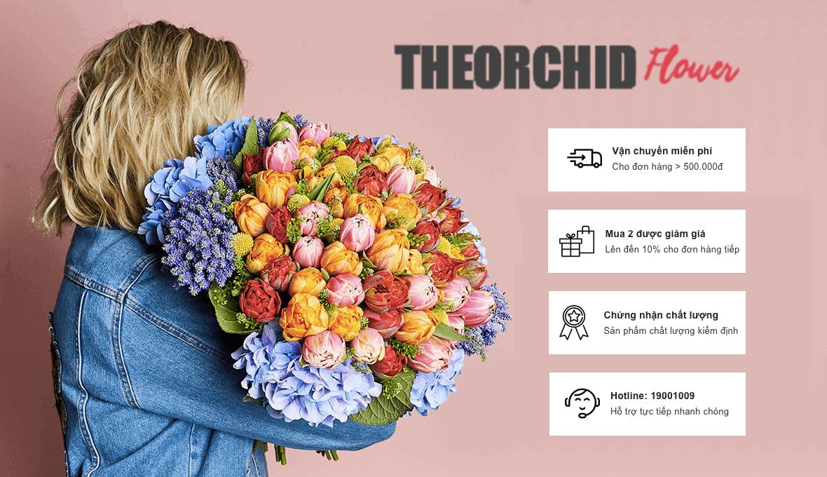 ưu đãi đặt hoa tại theorchid flower