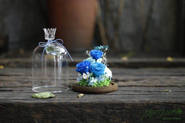 Chụp thủy tinh đế gỗ hoa hồng xanh