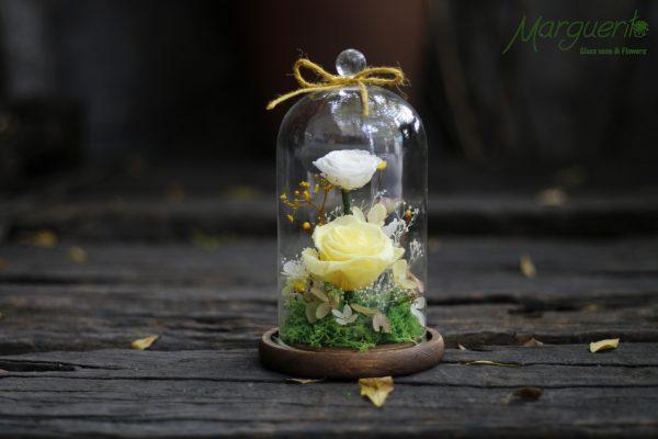 Chụp thủy tinh đế gỗ hoa hồng vàng