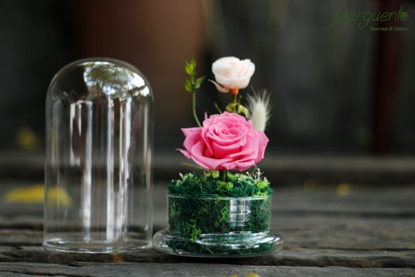 Nắp chụp và đế thủy tinh hoa hồng