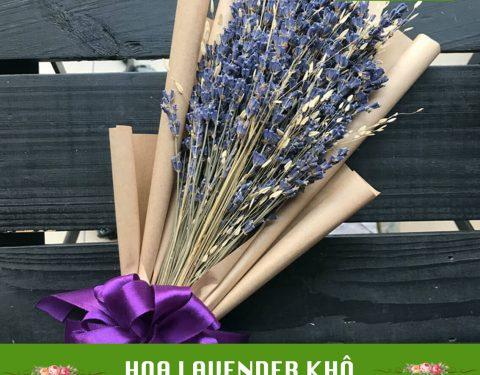 Hoa Lavender khô – Hàng chuẩn giá tốt