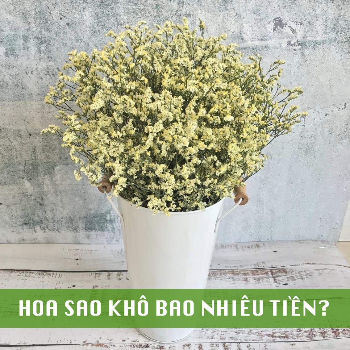hoa sao khô bao nhiêu tiền