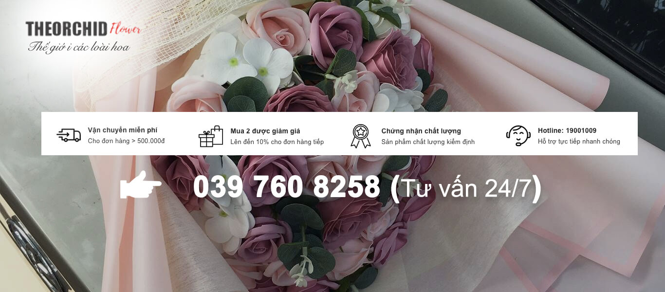 shop hoa 369