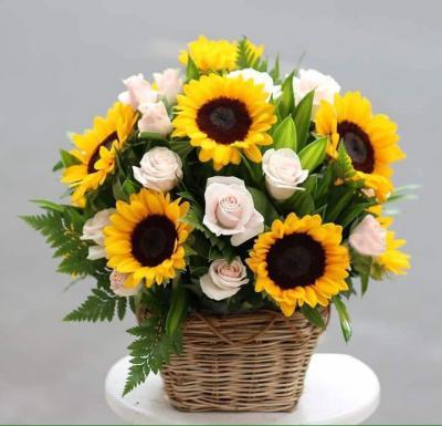 """Bó hoa hướng dương """"Sự ngọt ngào"""""""