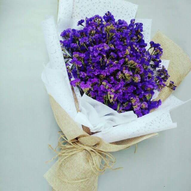 hoa salem