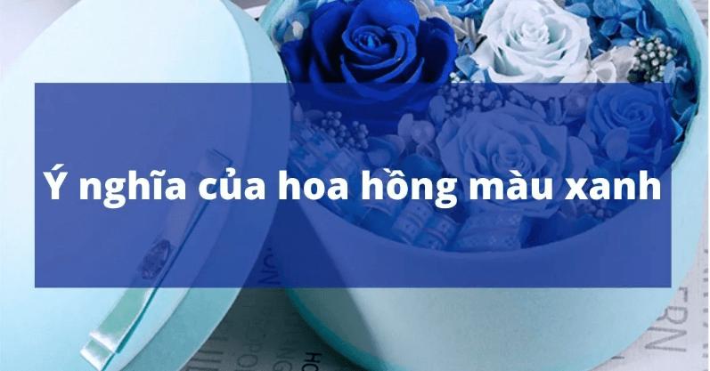 Ý nghĩa hoa hồng xanh trong cuộc sống