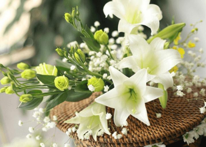 Ý nghĩa hoa loa kèn – Hoa tượng trưng cho tình yêu cao thượng